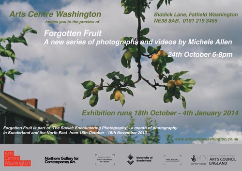 Michele Allen Forgotten Fruit